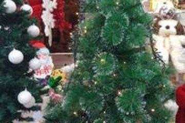 על נוביגוד, עצי אשוח, ושנה חדשה